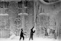 Boys with the huge icicles